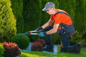 preventivi giardinieri salerno online